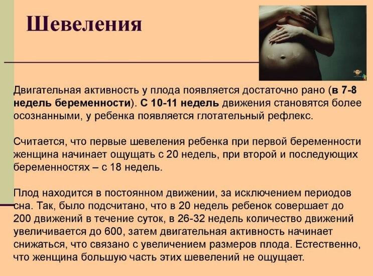 шевеления при беременности