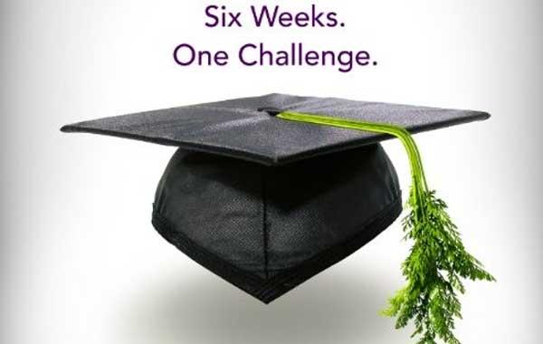 шесть недель на траве
